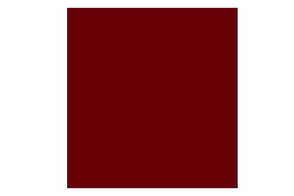 てんぷら膳様_膳_赤